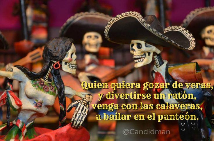 """""""Quien quiera gozar de veras y divertirse un ratón, venga con las #Calaveras, a bailar en el #Panteon"""". @candidman #Calaverita #Literaria #DiaDeMuertos"""