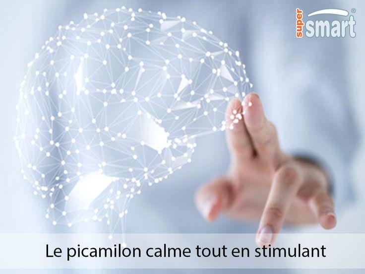 Le picamilon est une combinaison, en une seule et même molécule, de niacine et de GABA. Le picamilon exerce une action bénéfique en cas de stress, d'anxiété ou de dépression, de fatigue ou de baisse d'énergie ainsi que de sevrage alcoolique.