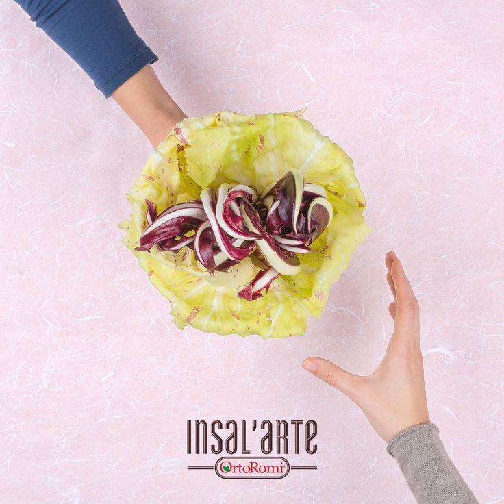 """Non per niente li chiamano i """"Fiori d'inverno!"""" #food #foodphotography #radicchio #healthyfood #inverno #winter #winterfood #insalarte #ortoromi #radicchiorosso #treviso #insalata #salad"""