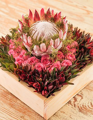 Wooden crate filled with leucadendron, roses and topped with a perfect king.