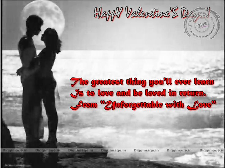 Best 25 Funny Valentines Day Quotes ideas – Romantic Valentine Card Sayings