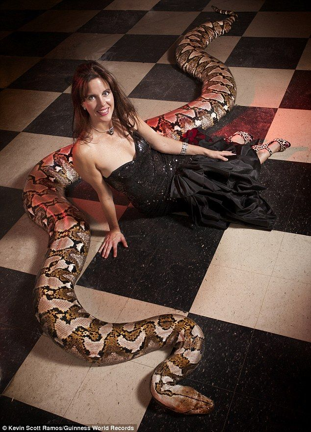 Reticulated python Medusa, has made the record books for being the longest snake ever to live in captivity