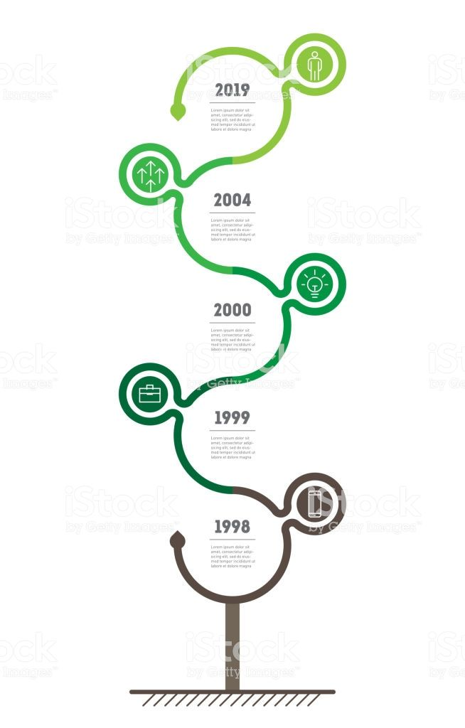 Vertical Timeline Infographics The Sustainable Development And
