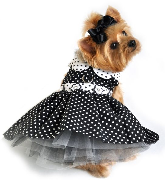 Black Polka Dot Dog Dress from Doggie Clothesline #dogclothes