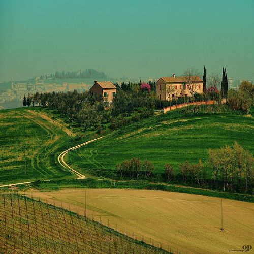 Rural Landscape/5 - Macerata   Osvaldo_Zoom