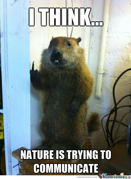 Other than helping Mother Earth you need nature laughs hahahaha hahahahahaha!
