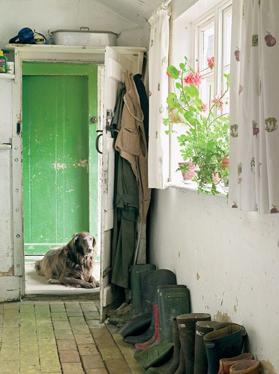 love the green door and the brick floor~and the old dog too