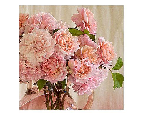 17 Best images about arranjos florais on Pinterest ...