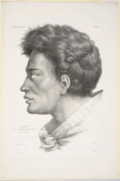 Nataï. L'un des chefs de la baie Bream (Nouvelle Zélande) [Nataï. One of the chiefs of Bream Bay] by Antoine Maurin, Louis Auguste de Sainson