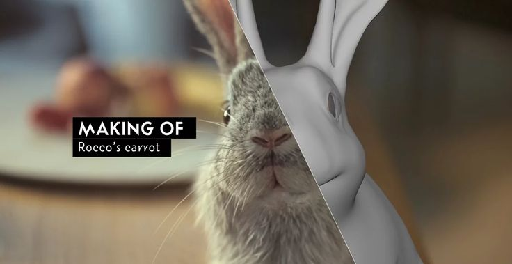 Rocco's Carrot - Making Of on Vimeo