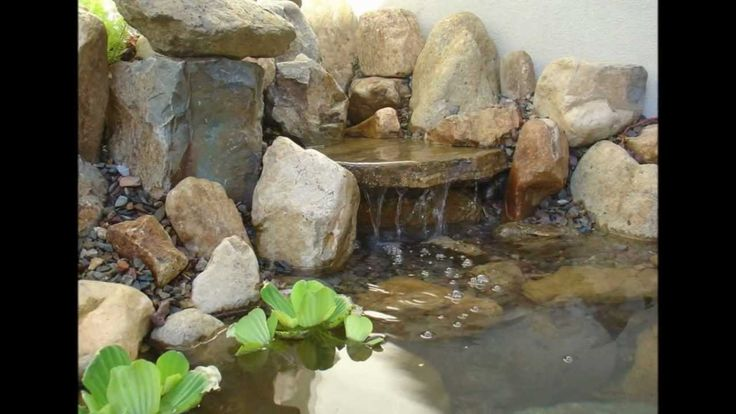 M s de 25 ideas incre bles sobre estanques de peces en for Piletas para peces
