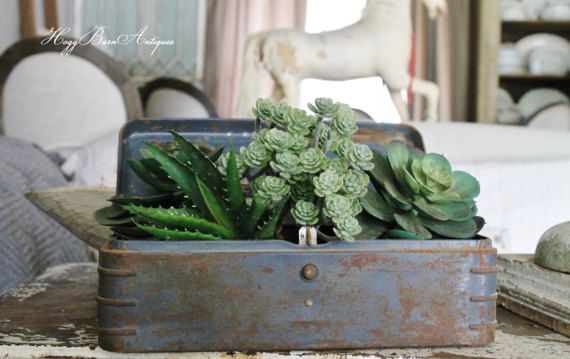 Repurpose a Vintage Metal Tool Box For a Farmhouse planter. Great for succulents . by HoggBarnAntiques