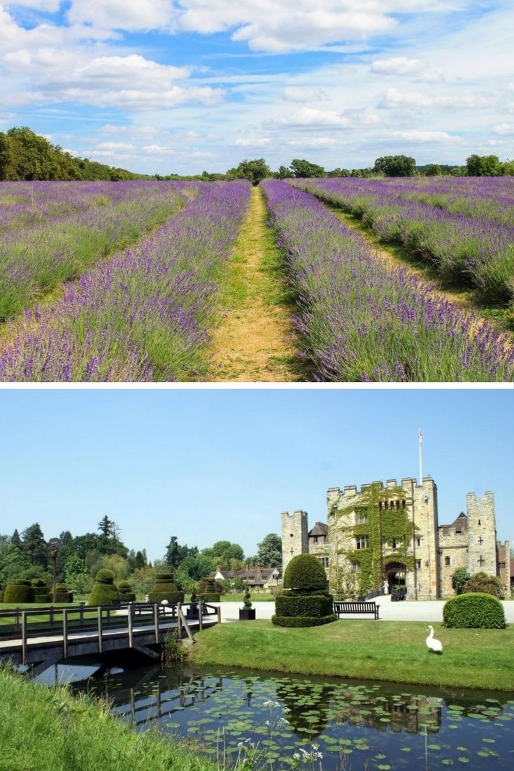 You don't even need to cross the M25 to feel like you're in a whole different world. Whether you're into stately homes or roller coasters, you can do pretty much anything you want within an hour of leaving the city.  Here are some of the best day-trip locations less than an hour from London.