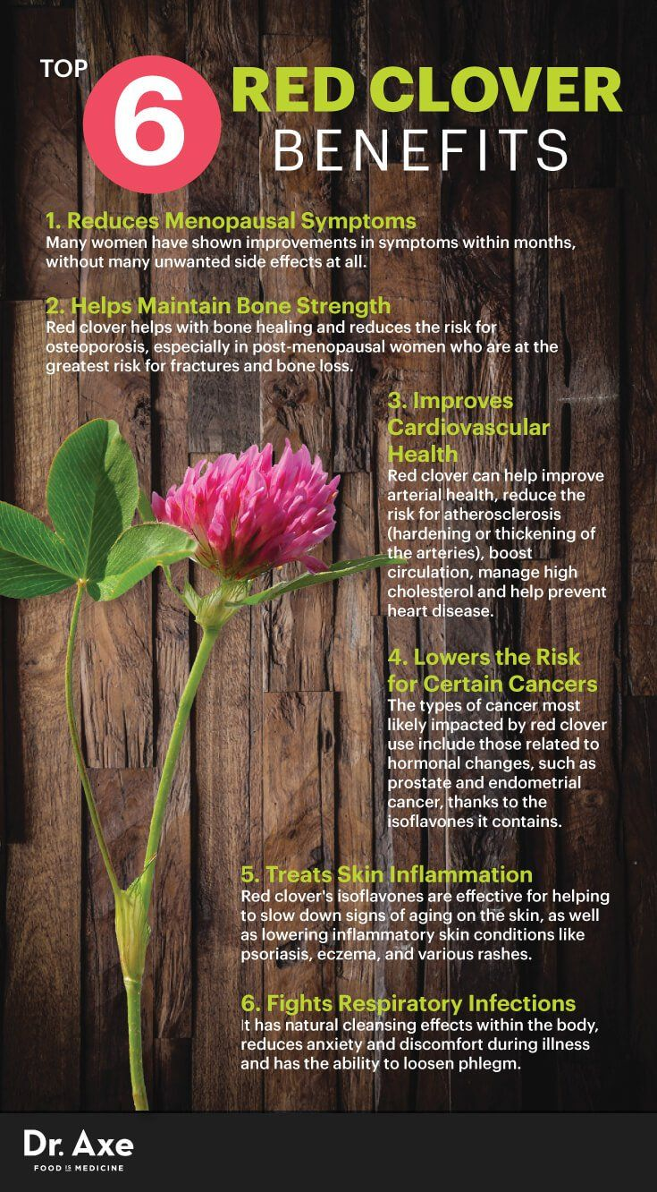 Red clover benefits - Dr. Axe