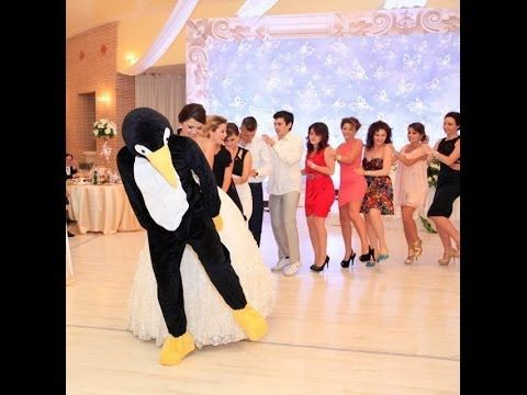 PENGUINE DANCE ALBANIA something to cheer up :-)