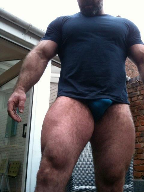 Moda oso gay