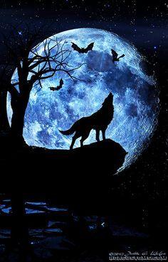 de goote moon
