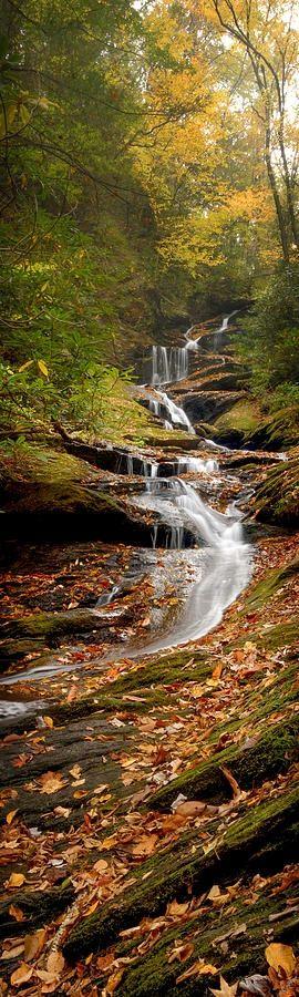 Roaring Fork Falls near Mount Mitchell in North Carolina • photo: Joye Ardyn Durham on FineArtAmerica  | Fall, Autumn photos