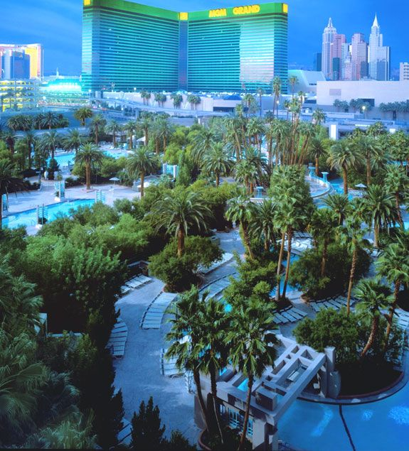 MGM Grand Swimming Pool ... a river, five pools, three whirlpools & an incredible amount of trees & shrubs.