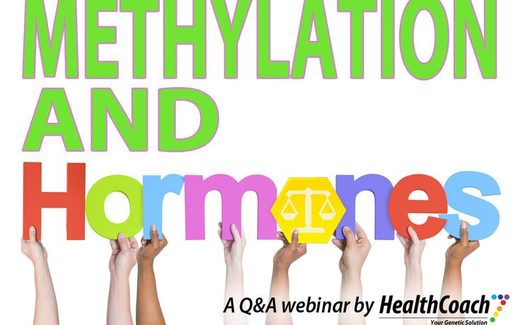 Methylation and Hormones - A Q&A with Dr John Catanzaro