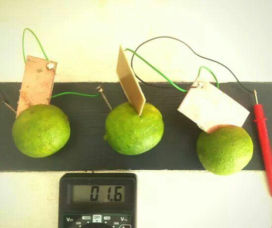 Owocni robią prąd - warsztaty