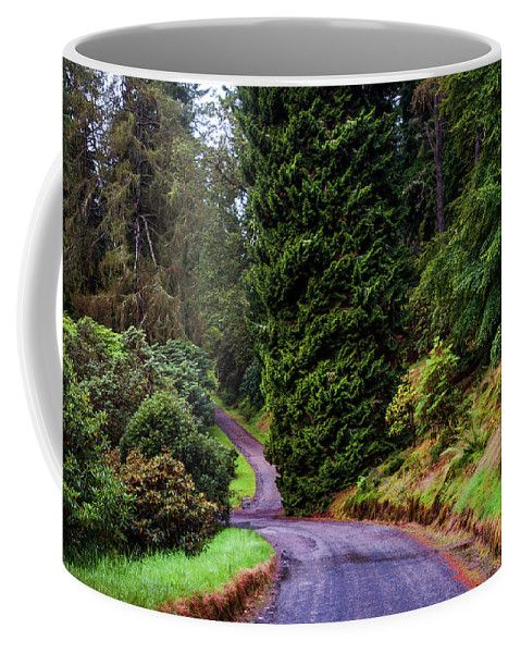 Jenny Rainbow Fine Art Photography Coffee Mug featuring the photograph Walking In Benmore Botanic Garden by Jenny Rainbow