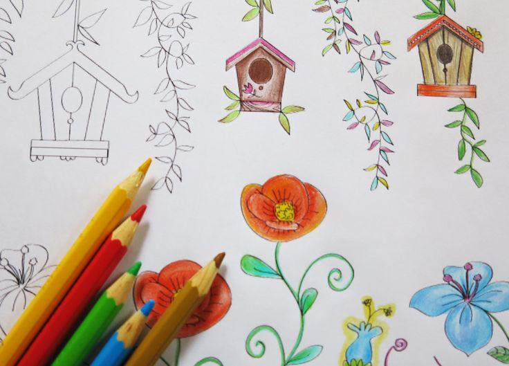Lapices de colores y casas de pájaros en FLORECE