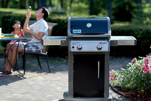 The Best Gas Grill   The Weber Spirit E210 is better built than cheap grills and filled with features found on more expensive models, the tough, two-burner Weber Spirit E-210 is compact and capacious, and it's a deal at its current price.