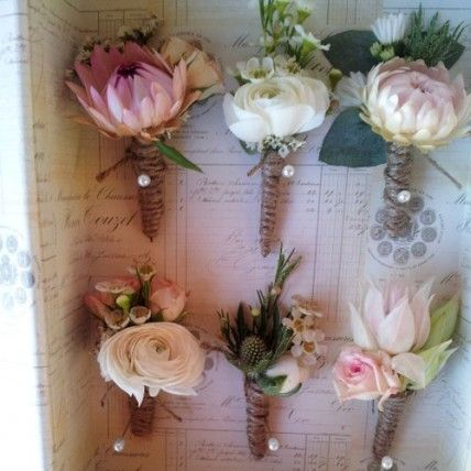 Pink White and Green Bouttoniere paper daisies blushing brides sea holly ranunculus gum and geralton wax