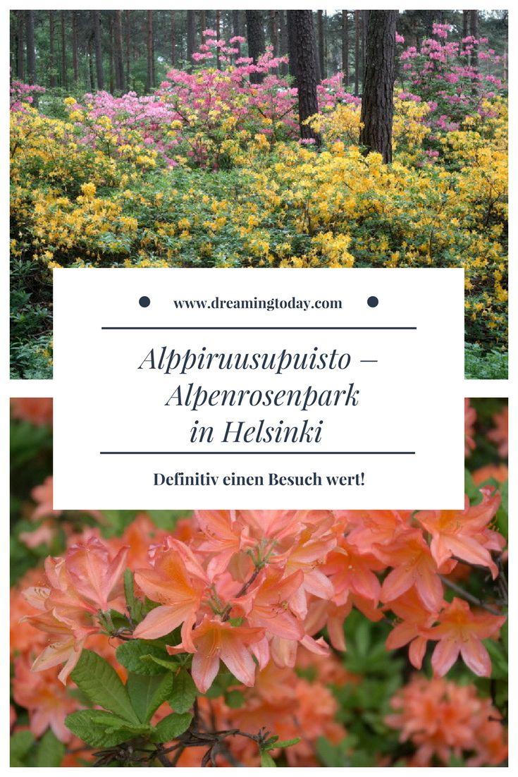 Der Alpenrosenpark (Alppiruusupuisto) in Helsinki ist ein Besuch wert. Zwischen den bunten Blumen vergisst man fast, dass man im kühlen Finnland ist.