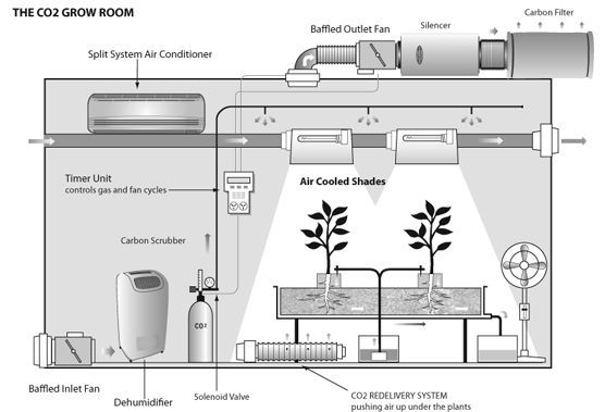 Co2 in grow room google search co2 pinterest Grow room designs