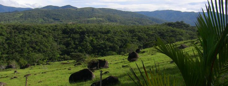 Pasture views on the farm with big boulders and Talamanca mountain views, home to the La Amistad International Park.