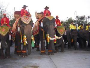 Chaopho Phraya Lae Festival also called the Chaiyaphum Elephant Festival