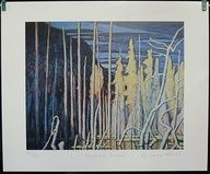 Group Of Seven Ltd Art Print - Tamarack Swamp- LAWREN HARRIS $29.99