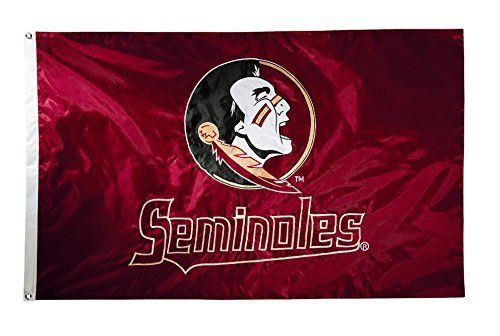 NCAA Florida State Seminoles 2-Sided Nylon Applique Flag with Grommets, 3' x 5', Cardinal by BSI. NCAA Florida State Seminoles 2-Sided Nylon Applique Flag with Grommets, 3' x 5', Cardinal. 3' x 5'.
