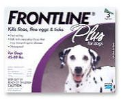 Pet Supplies: New Frontline Plus Flea And Tick Control For 45 To 88 Pounds Dogs 6 Doses -> BUY IT NOW ONLY: $49.95 on eBay!