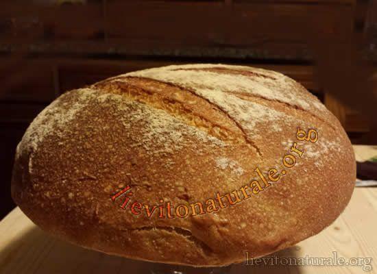 Pane morbido e soffice con Lievito Naturale o Pasta Madre e Farina Macinata a Pietra