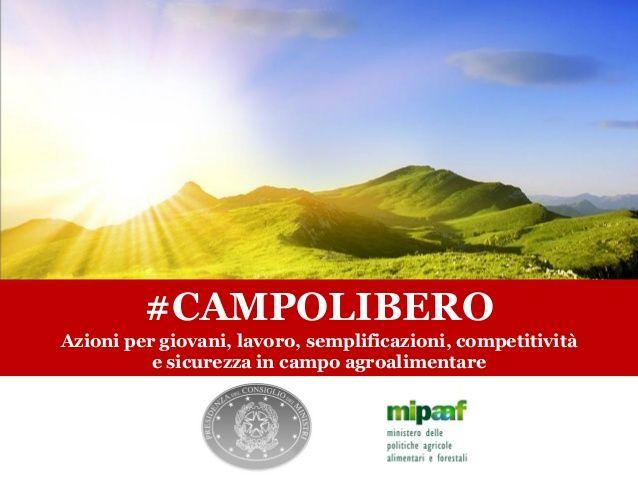 #campolibero: previste dal Decreto Crescita agevolazioni per gli agricoltori giovani e innovativi e per le reti d'impresa