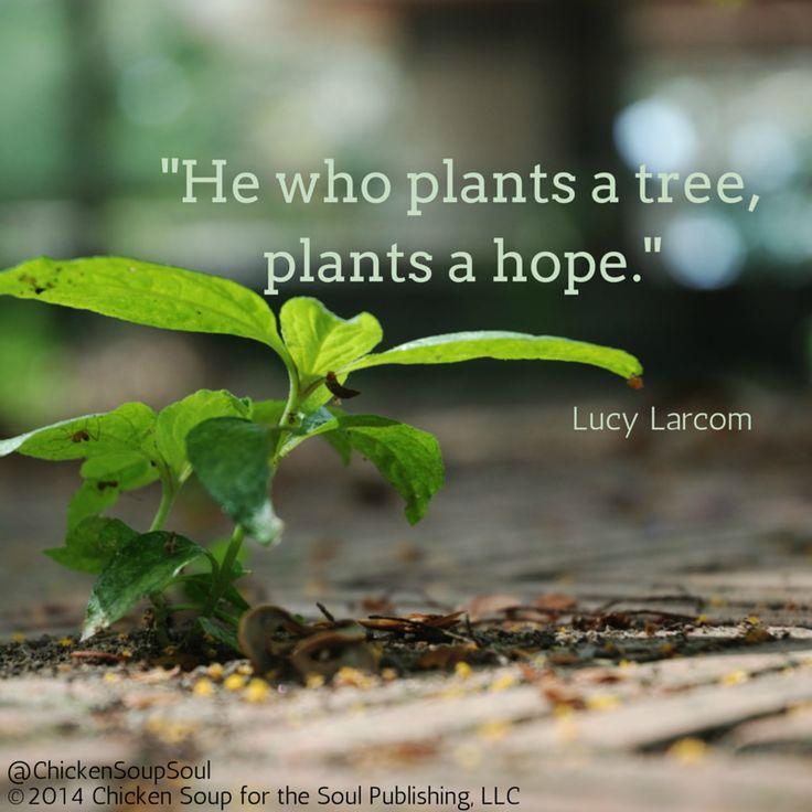 """""""He who plants a tree, plants a hope."""" ~Lucy Larcom"""
