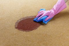 Cheap carpet cleaning solutions made from vinegar, detergent and other household items can remove stains or pre-treat high-traffic carpets before cleaning.