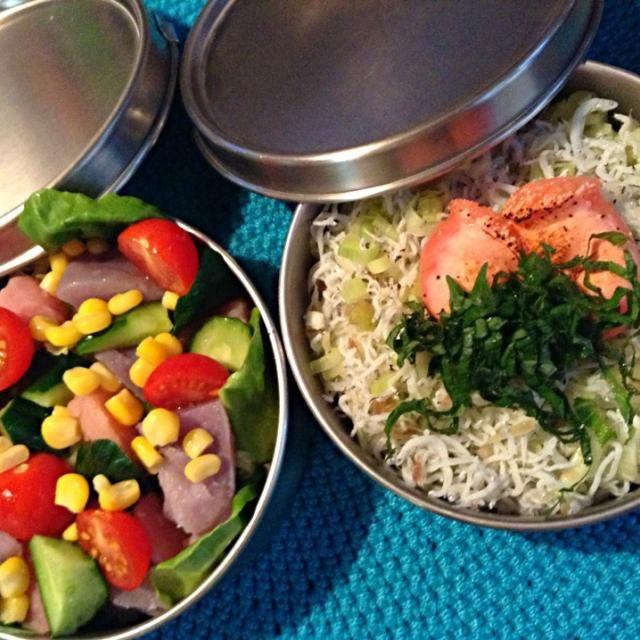 蒸し暑いですね〜(。-_-。) - 40件のもぐもぐ - シラス焼きたらこと赤&紫芋サラダ弁当 by nnn04