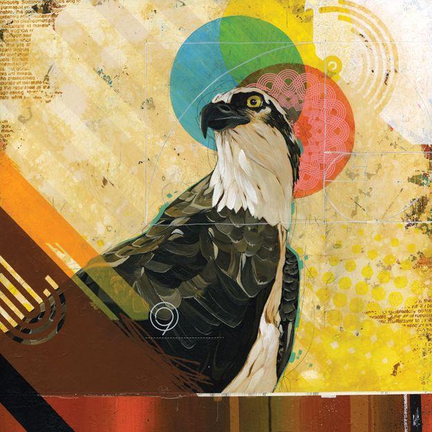 GoldenPREY, Osprey Commission by Fontana Studio