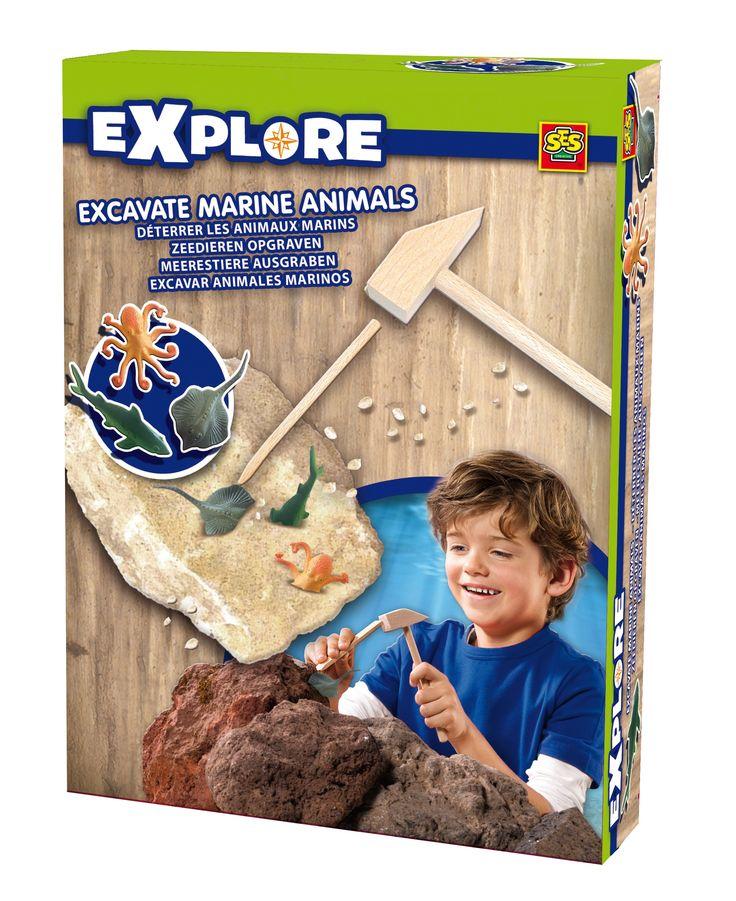 Van deze doos zijn drie verschillende versies. Ga jij op zoek naar dino's, zeedieren of maanstenen? Verzamel ze allemaal. Onder de naam Explore brengt SES speelgoed rond de onderwerpen natuurverschijnselen, ontdekken en onderzoeken.   Afmeting: 252x316x216 mm - Opgravingset SES: zeedieren opgraven