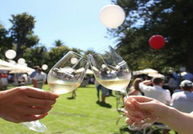 Constantia Fresh Fine Wine and Food Festival