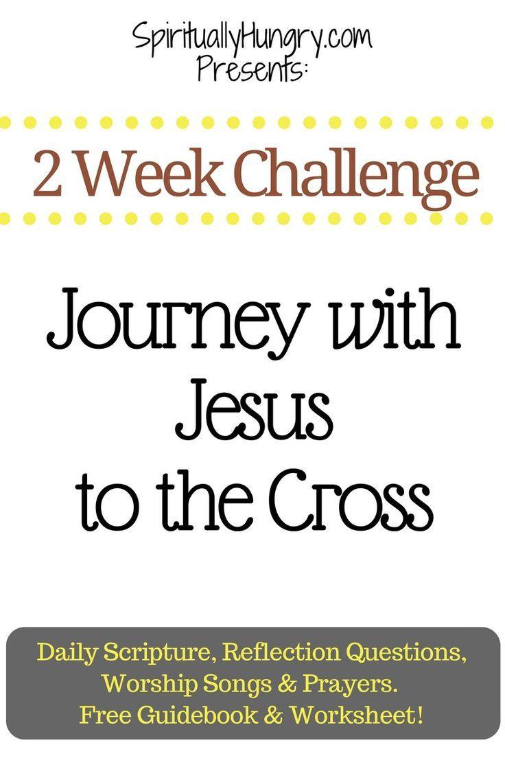 Everyday Bible Study - YouTube