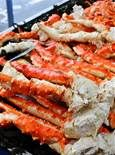 alaskan king crab - Bing Images