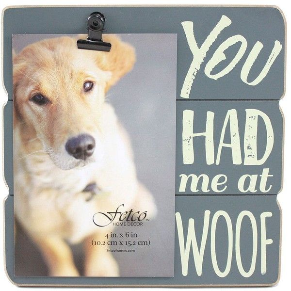 1000 Ideas About Dog Picture Frames On Pinterest Dog