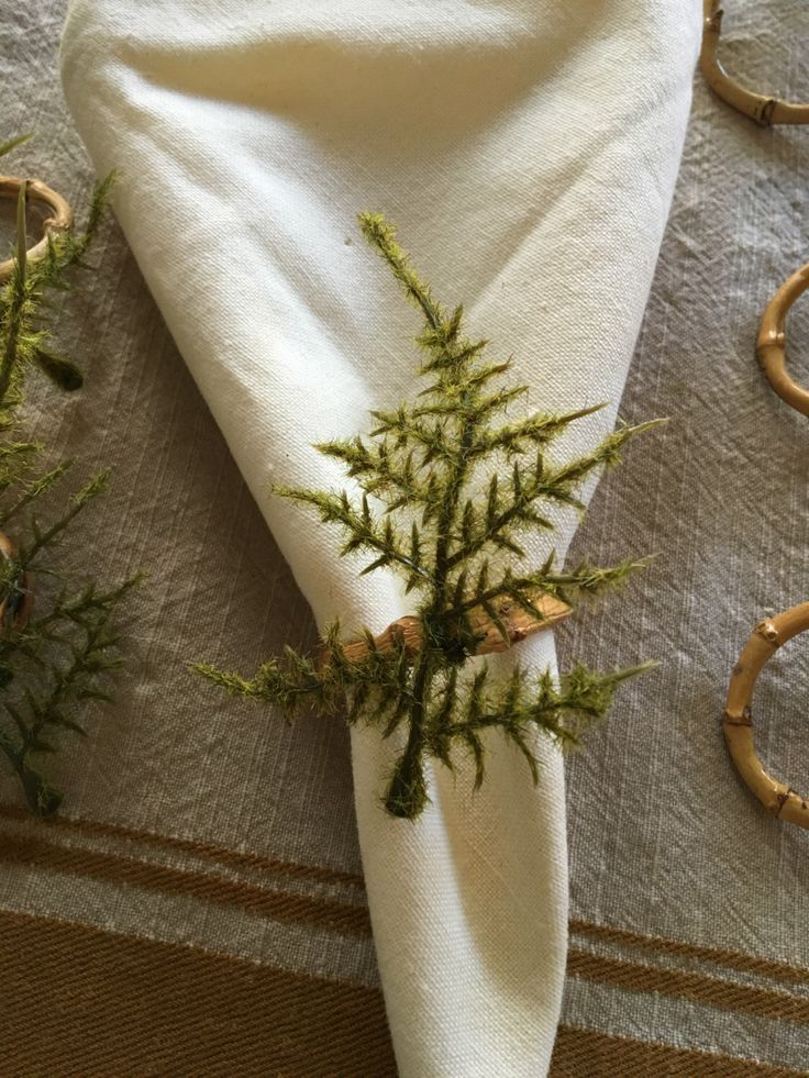 A personal favorite from my Etsy shop https://www.etsy.com/listing/267456541/6-piece-ferns-with-bamboo-napkin-rings