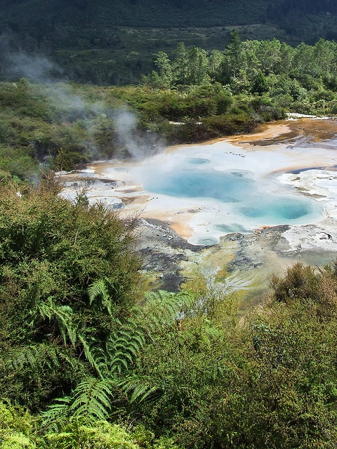 Orakei Korako Geothermal Area along the Waikato River. Between Taupo and Rotorua.