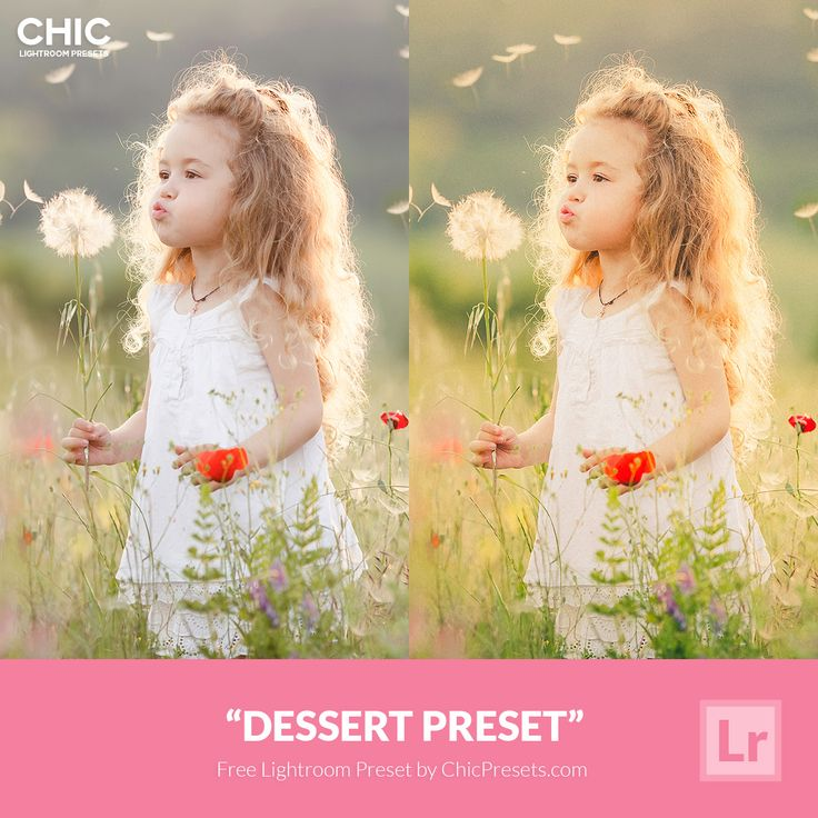Free Chic Lightroom Preset: Dessert
